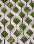 Grass Pavements